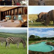 Dentist Safaris & Holidays